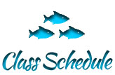 Scuba Classes NYC