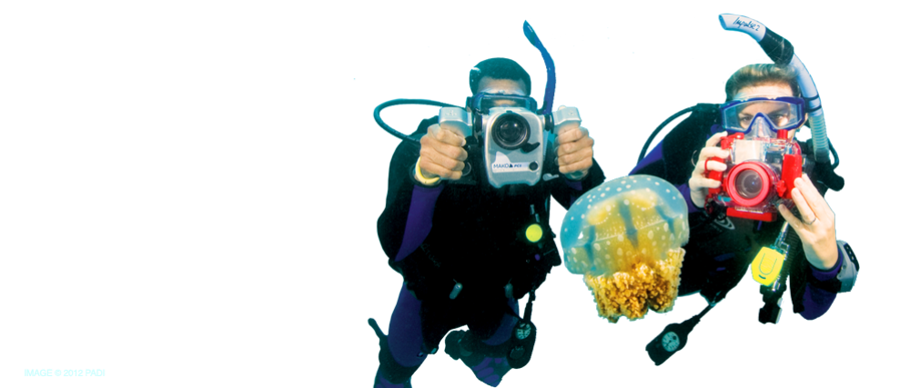 Scuba Certification NYC